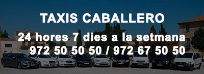 Taxis Caballero VTC